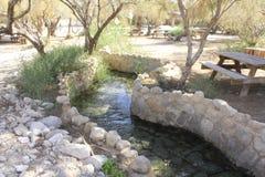 在Ein Fashkha, Einot Tzukim自然储备绿洲的小河在圣地 库存图片