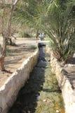 在Ein Fashkha, Einot Tzukim自然储备绿洲的小河在圣地 免版税图库摄影