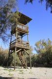 在Ein Fashkha, Einot Tzukim自然储备绿洲的木塔在圣地 免版税库存照片