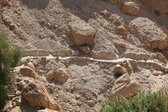 在Ein Gedi,以色列沙漠绿洲的道路  库存照片