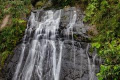 在El Yunque的古柯瀑布 库存照片