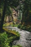 在elbsandsteingebirge的美好的风景 库存照片