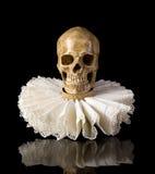 在elisabethan出王牌衣领的死亡头骨 免版税库存照片