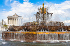 在ENEA的喷泉石花 库存图片