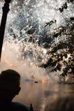 在Epcot的烟花华特・迪士尼世界的 库存照片