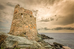 在Erbalunga的热那亚人的塔盖帽的Corse在可西嘉岛 免版税库存照片