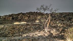 在Erta强麦酒火山, Danakil附近的熔岩荒野,在远处,埃塞俄比亚 免版税库存照片