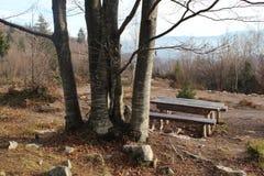 在ethno vilage的空的长凳在萨拉热窝附近 免版税图库摄影