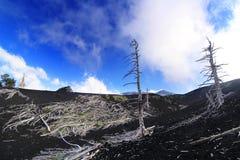 在Etna火山倾斜的被硬化的熔岩  免版税库存图片