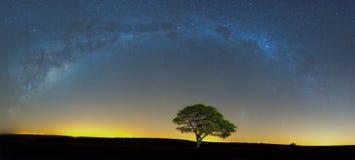 在Ezemvelo的Milkyway 免版税图库摄影