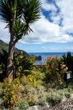 在Faial和Penha de A?  guia或老鹰岩石,马德拉岛,葡萄牙的观点 图库摄影