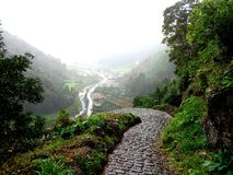 在Faial da土地,亚速尔群岛的道路 免版税库存照片