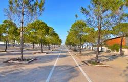 在Faliro体育亭子竞技场旁边的自行车比赛-一部分的Faliro沿海水域奥林匹克复杂雅典希腊 免版税库存图片