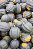 在farmstand的新近地被收获的橡子南瓜 图库摄影