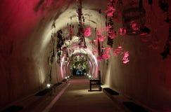 在Floraart暴露的花, 52国际性组织在隧道Gric的庭院陈列在萨格勒布 库存图片