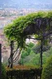 在Florens上面的庭院  免版税库存照片