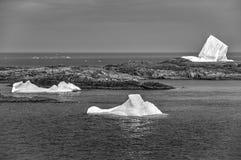 在Fogo海岛附近的三座冰山 免版税库存照片