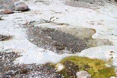 在Folhammar的纯净的白色石灰石在海岛哥得兰岛上 免版税库存图片