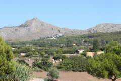 在Formentera海岛的横向  免版税库存图片