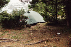 在forrest的野营的帐篷,早晨 免版税库存照片