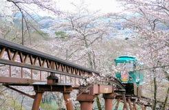 在Funaoka城堡废墟公园,柴田,宫城, Tohoku, April12,2017的日本的樱花节日:通过佐仓隧道的倾斜汽车 免版税库存图片