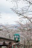 在Funaoka城堡废墟公园,柴田,宫城, Tohoku, April12,2017的日本的樱花节日:通过佐仓隧道的倾斜汽车 库存照片