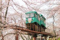 在Funaoka城堡废墟公园,柴田,宫城, Tohoku, April12,2017的日本的樱花节日:通过佐仓隧道的倾斜汽车 免版税图库摄影
