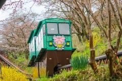 在Funaoka城堡废墟公园,柴田,宫城, Tohoku, April12,2017的日本的樱花节日:通过佐仓隧道的倾斜汽车 库存图片