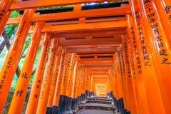 在Fushimi Inari寺庙寺庙的红色花托门在京都,日本 免版税库存照片