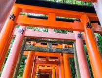 在Fushimi Inari寺庙的红色花托门在京都,日本 免版税库存照片
