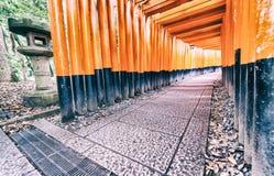 在Fushimi Inari寺庙的红色花托门在京都,日本 库存图片