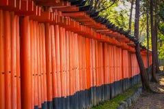 在Fushimi Inari寺庙的Torii门 图库摄影