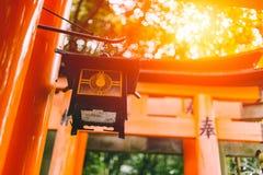 在Fushimi Inari寺庙Fushimi Inari Taisha的日本文化旅行美好的太阳光 免版税库存照片