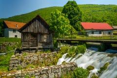 在Gacka河,克罗地亚 免版税图库摄影
