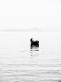 在Garda湖的渔船 库存图片