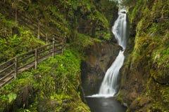 在Glenariff森林公园的瀑布在北爱尔兰 免版税库存图片
