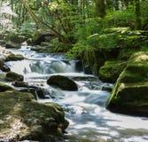 在Golitha秋天河Fowey Bodmin的瀑布停泊康沃尔郡英国 免版税库存照片