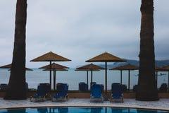 在gorgeus绿草旁边的美丽和迷人的蓝色游泳池 美妙的草甸和舒适围拢的安静的水 免版税库存图片