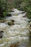 在Goshen通行证,弗吉尼亚的一条快行山小河 免版税图库摄影