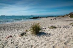 在Grenen的海滩在斯卡恩附近在丹麦2017年 库存照片
