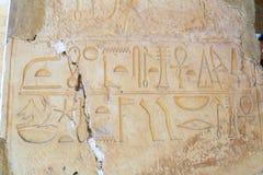 在Hatshepsut寺庙的壁画  免版税库存图片