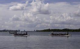 在Haulover海滩的龙舟赛 库存照片