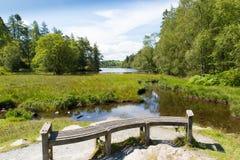 在Hawkshead湖区国家公园英国英国附近的塔恩省方法在一个美好的晴朗的夏日 免版税库存图片