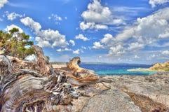 在HDR的海风景 免版税库存照片