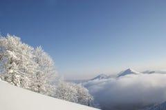 在Herzogstand的冬天 库存照片