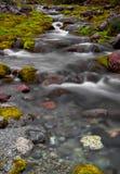 在Hibiny山的小河 库存图片
