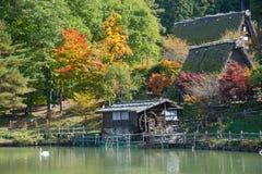 在Hida民间村庄takayama日本的颜色充分的秋天树。Touri 库存照片