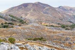 在Hiraodai石灰岩地区常见的地形高原的被烧的冬天风景 免版税图库摄影
