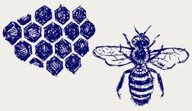 在honeycells的工作的蜂 免版税库存照片
