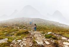 在Hoverla上面的游人攀登  免版税库存图片